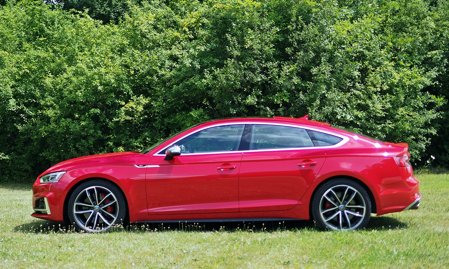 Kia Stinger Photos: Audi S5 Sportback side view