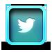 TrueDelta at Twitter